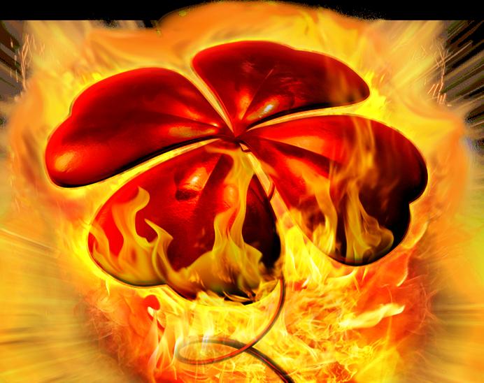 25 Red Hot Burning Clover Link™